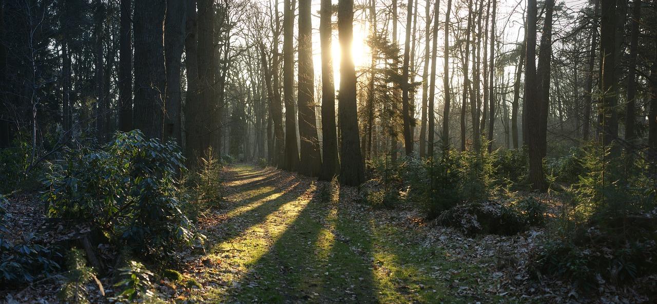 IRVING NATURE PARK
